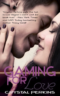 Gaming For Love Book Cover
