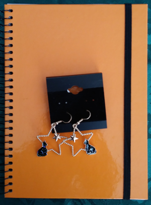 Cat Star Earrings & Mini-Journal